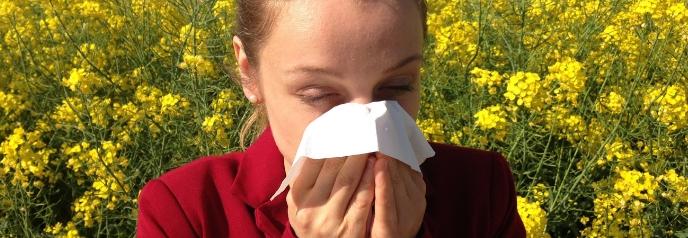 Seasonal Allergies or Sinus