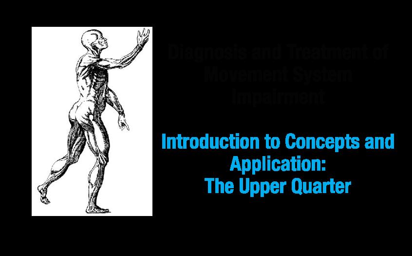 MSI - Upper Quarter Intro